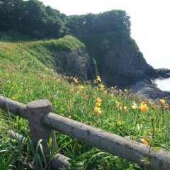 Cape Tsubana (Tsubanazaki)
