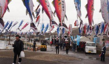 マグロ祭り2015