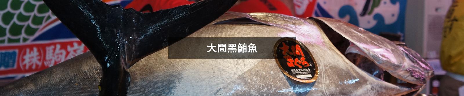 大間黑鮪魚